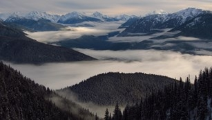 Hurricane Ridge, Olympic National Park